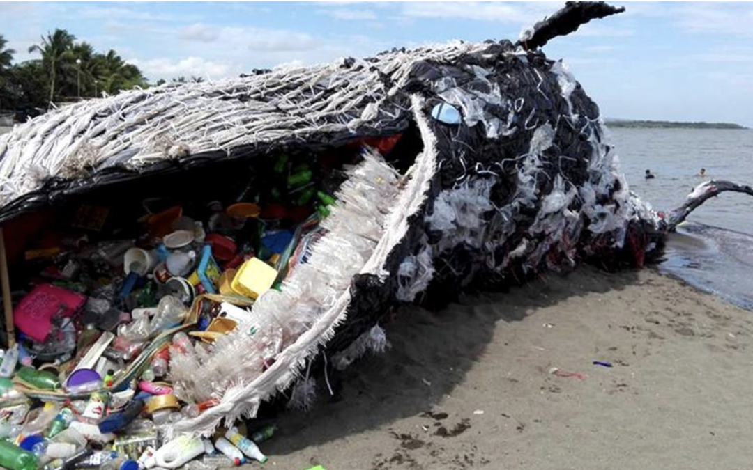 plastic pollution earth day 2018